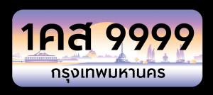 license plate-graphic